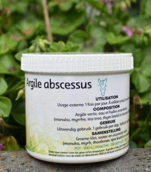 Argile abscessus